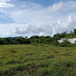 Beautiful Land for Sale in Layan -L003 5