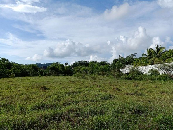 Beautiful Land for Sale in Layan -L003 224
